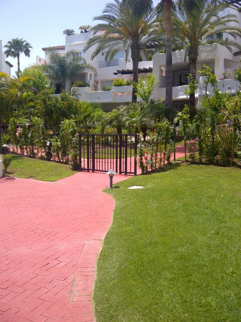 Mantenimiento de jardines jardines y piscinas borrego for Mantenimiento de jardines